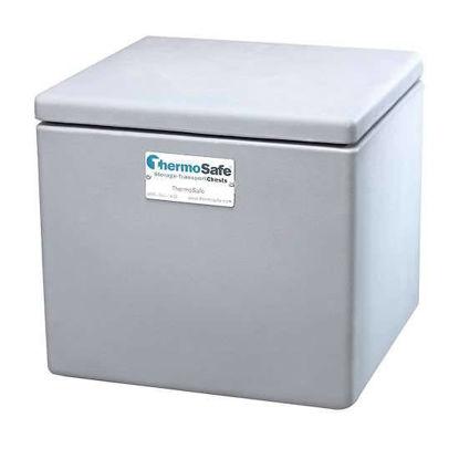 Dry Ice Storage Chest, tabletop, polyethylene, 50 lb capacity