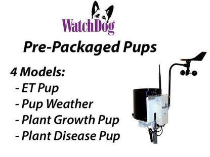 Watchdog Weather Pup Station