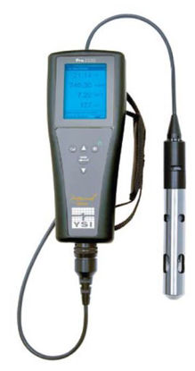 Dissolved Oxygen/Conductivity/Salinity Temperature Handheld