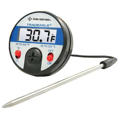 DS THERMOMETR W/FLEXIBLE PROBE