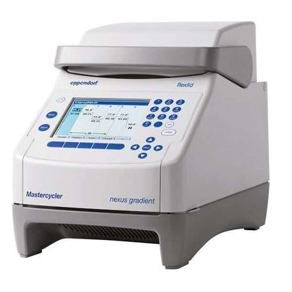 THERMAL CYCLER ECO 6332000029