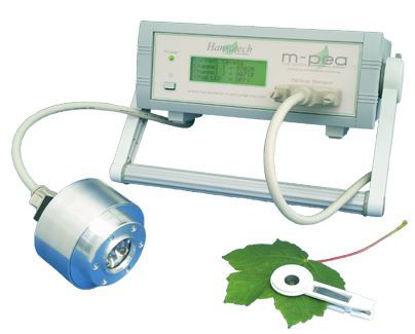 Multifunction fluorescence system