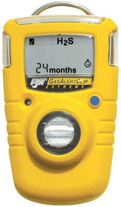 BW Technologies GAXTSD Single-Gas Detector, Sulfur Dioxide, with data logging