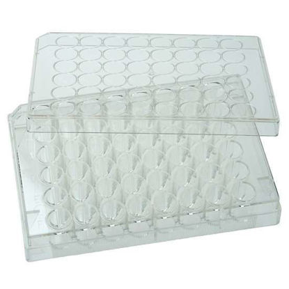 Cole-Parmer 48-Well Cell Culture Plate with Lid; 100/cs