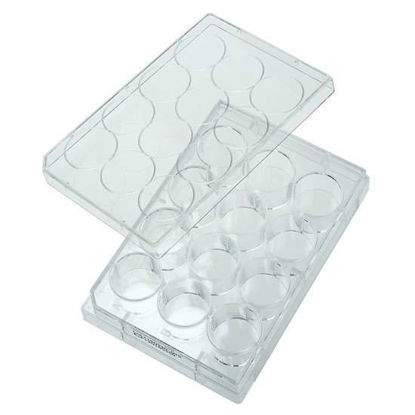CELLTREAT Scientific Products 229512 12-Well Cell Culture Plate with Lid; 100/cs