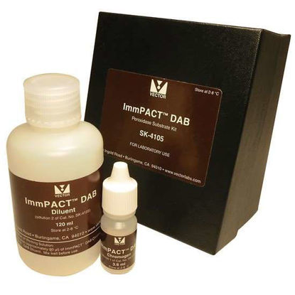 Vector Laboratories ImmPACT DAB Substrate Kit, Brown,  120 ml