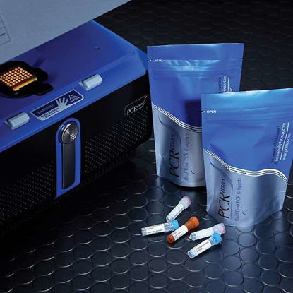 PCRmax DNA Bovine Herpesvirus 1, without mastermix