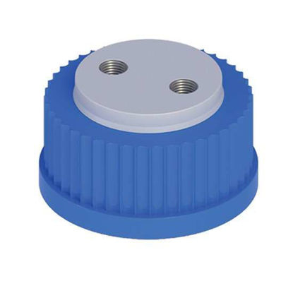 "Cole-Parmer VapLock Solvent Delivery Cap with 304 SS Port Thread Inserts, two 1/4""-28, GL45; 1/ea"